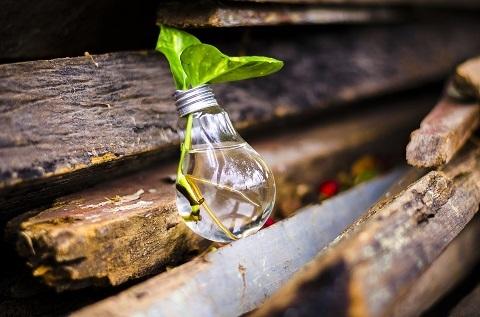 Genbrugsmarketing - Blogindlæg af Anita Cordes